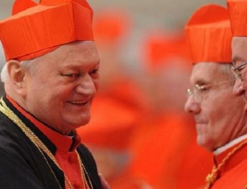 Opt ani de la ridicarea la demnitatea de cardinal a Preafericitului Părinte Lucian