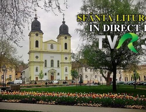 Catedrala Blajului: Sfânta Liturghie din Sărbătoarea Fericiților Episcopi Martiri în direct la TVR 3