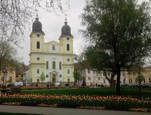 Catedrala Blajului: Sfânta Liturghie Arhierească din Duminica a XXX-a după Rusalii, în direct la TVR 3 și Radio Blaj TV
